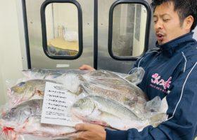 ざこばの朝市オンラインショップの『鮮魚セット』